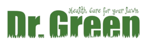 Dr.-Green-Transparent-Logo-300x95